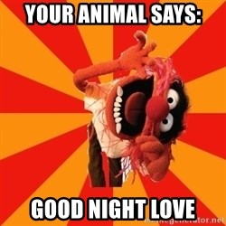 Animal Muppet - your animal says: good night love