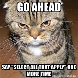 """angry cat 2 - Go ahead Say """"select all that apply"""" one more time"""