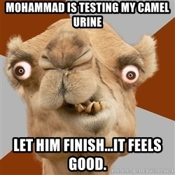 Crazy Camel lol - mohammad is testing my camel urine let him finish...it feels good.