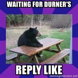 waiting bear - Waiting for Durner's Reply Like