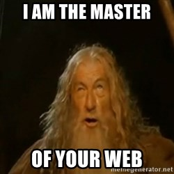 Gandalf You Shall Not Pass - i am the master of your web