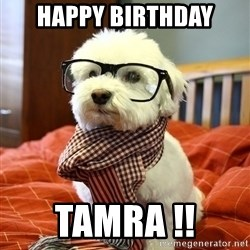 hipster dog - happy birthday tamra !!