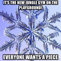 Special Snowflake meme - it's the new jungle gym on the playground! everyone wants a piece
