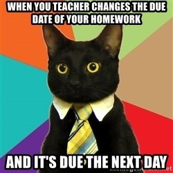 Business Cat - when you teacher changes the due date of your homework and it's due the next day