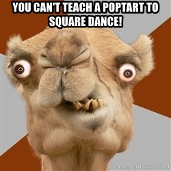 Crazy Camel lol - You Can't teach a poptart to square dance!