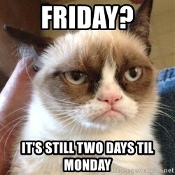 Grumpy Cat 2 - Friday? it's still two days til monday