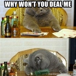 Poker Cat - why won't you deal me