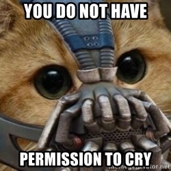 bane cat - You do not have PermissIon to cry