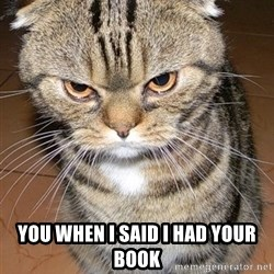 angry cat 2 -  You When i said i had your book