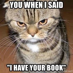 "angry cat 2 - You when i said ""I have your book"""