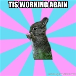 yAy FoR LifE BunNy - tis working again