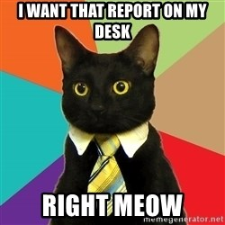 Business Cat - I want that report on my desk right meow