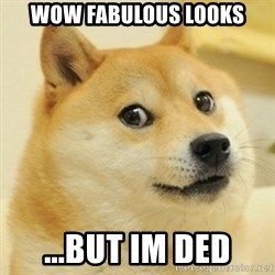 doge wow - Wow fabulous looks ...but im ded