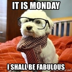 hipster dog - It is monday i shall be fabulous
