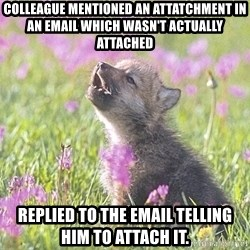 Baby Insanity Wolf - Colleague mentioned an attatchment in an email which wasn't actually attached replied to the email telling him to attach it.