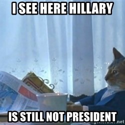 newspaper cat realization - i see here hillary is still not president