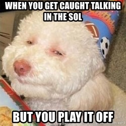 Troll dog - when you get caught talking in the sol but you play it off