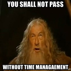 Gandalf You Shall Not Pass - You shall not PASS Without time Managaement