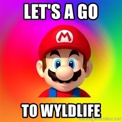 Mario Says - let's a go to wyldlife