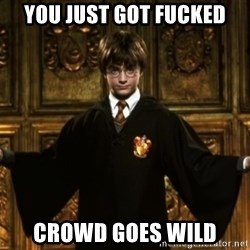 Harry Potter Come At Me Bro - You just got fucked crowd goes wild