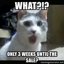 Surprised Cat - What?!? Only 3 weeks until the sale?