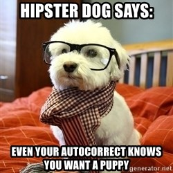 hipster dog - Hipster dog says: Even your autocorrect knows you want a puppy
