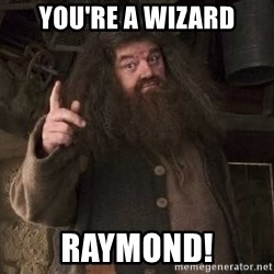 Hagrid - You're a wizard Raymond!