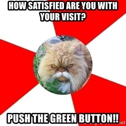 Diabetic Cat - How satisfied are you with your visit?  Push THE GREEN BuTTOn!!