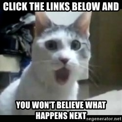Surprised Cat - Click the links below and you won't believe what happens next