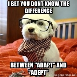 "hipster dog - I bet you dont know the Difference Between ""adapt"" and ""adept"""