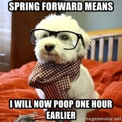 hipster dog - Spring forward means I will Now poop one hour earlier