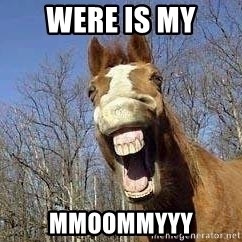 Horse - WERE IS MY MMOOMMYYY