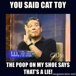 Maury Povich Father - you said cat toy The poop on my shoe says that's a lie!