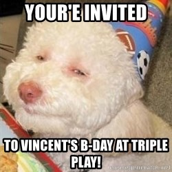 Troll dog - your'e invited to vincent's b-day at triple play!