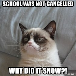 Grumpy cat 5 - school was not cancelled why did it snow?!