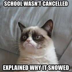 Grumpy cat 5 - school wasn't cancelled explained why it snowed
