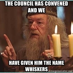 dumbledore fingers - THE COUNCIL HAS CONVENED AND WE  Have Given Him THE NAME whiskers