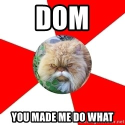 Diabetic Cat - DOM You made me do what