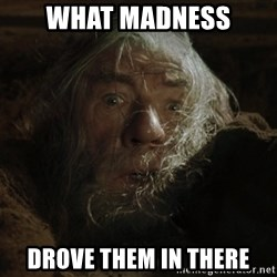 gandalf run you fools closeup - What Madness DROVE them in There