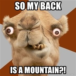 Crazy Camel lol - so my back is a mountain?!