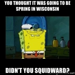 didnt you squidward - You thought it was going to be spring in Wisconsin Didn't you Squidward?