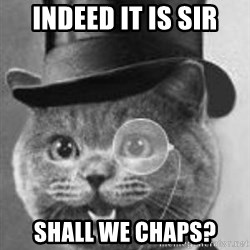 Monocle Cat - Indeed it is sir Shall we chaps?
