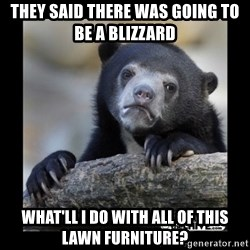 sad bear - They SAID THERE was Going to be a Blizzard  WHAT'll I DO WITH ALL of This LAWN Furniture?