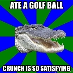 Noob Hisoutensoku Alligator - ate a golf ball crunch is so satisfying