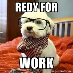 hipster dog - redy for  work