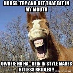 Horse - Horse: Try and get that bit in my mouth Owner: HA HA - Rein in Style makes bitless bridles!!
