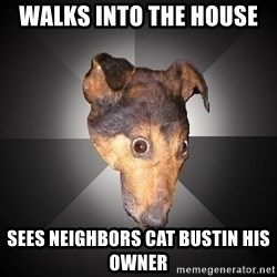Depression Dog - walks into the house  sees neighbors cat bustin his owner