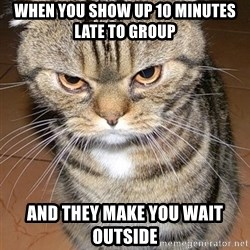 angry cat 2 - When you show up 10 minutes late to group And they make you wait outside