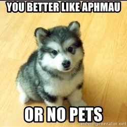 Baby Courage Wolf - you better like aphmau  or no pets
