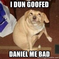 Oh You Dog - I dun GOOFED DANIEL me bad
